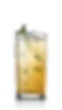 cocktail_mint_julep-1.png