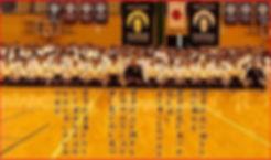 Gesshinkai Karate Competition