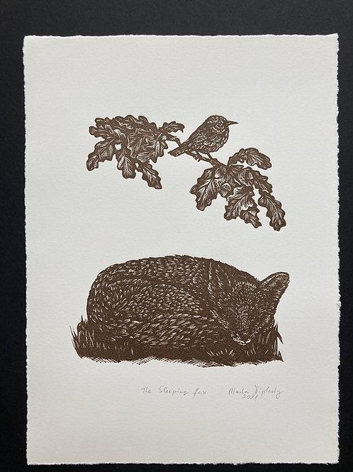 The sleeping fox