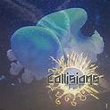 Collisions Album Cover.jpg