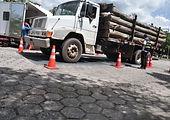 Caminhão-carregado-de-toras-de-eucalipto
