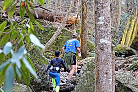 Trail runners in WNC
