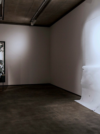 20140508 Susan Connolly Exhibition Docum
