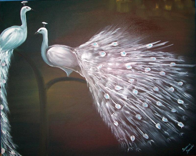 peacock love