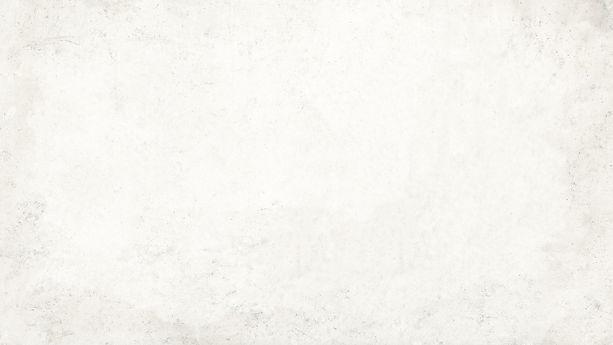 APEX-WHITE-BG.jpg