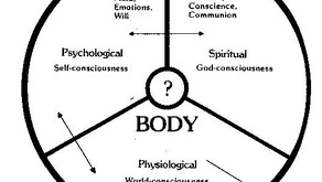 Spirit, Soul and Body. Do You Know How They Work Together?