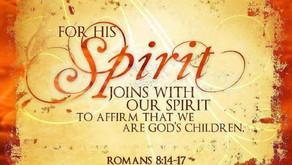 Spirit Or Flesh?