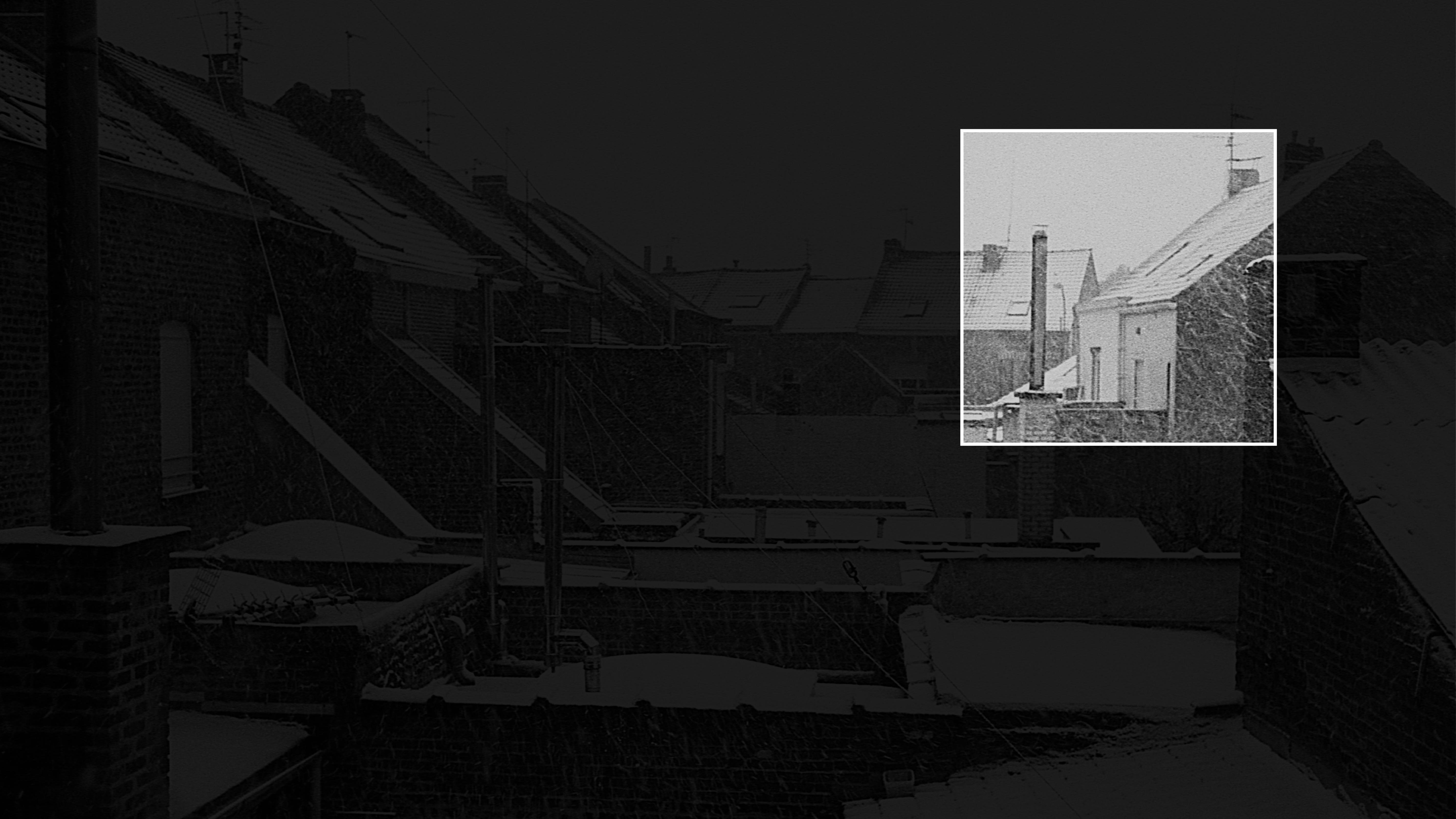 background2-02-02-02.jpg