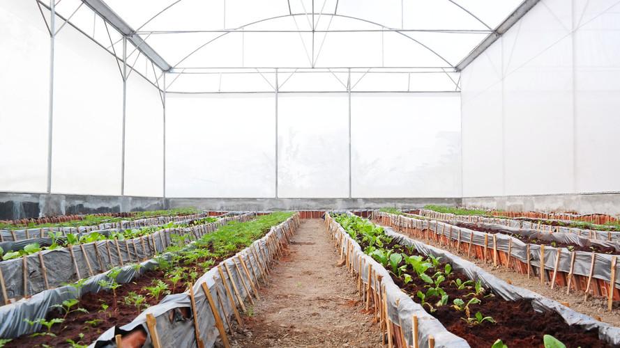 SMK model pertanian 3.jpg