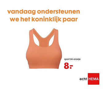 inhaak advertentie hema.png