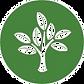 environment-csp%20FINAL_edited.png