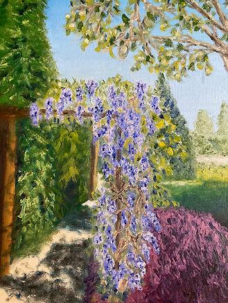 9. Wisteria arbour - Castle Gardens.jpeg