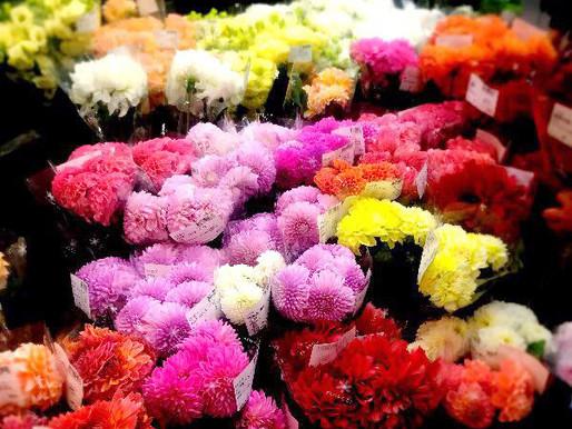 長く楽しめる良い花を届ける