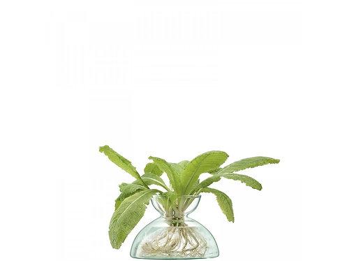 LSA(エルエスエー) フラワーベース(花器) Canopy Vase Recycled Clear 商品番号 LCQ08 G1584-09-161