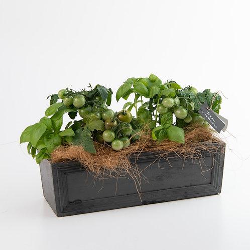 トマトとバジルのガーデニングセット「森の土」付き