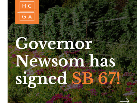 Governor Newsom Makes Cannabis Terroir Program Official With SB 67 Signing