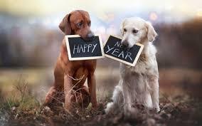 Happy 2018 Everyone!