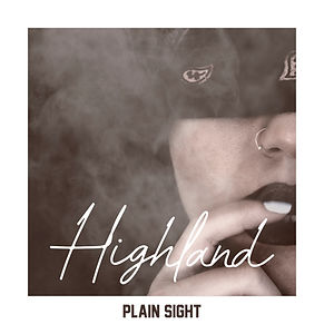 Plain Sight Final Cover.jpg
