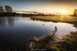 Chibolton Cow Common Sunset