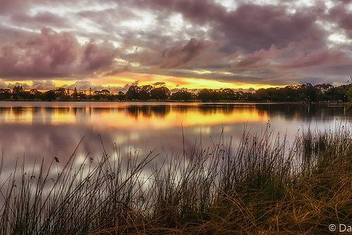 Lake Monger 2 - WA