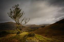 Lake District Hills 1
