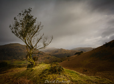 4 Day Photography Trip to the Lake District