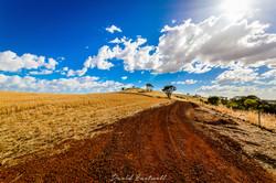 Dumbleyung Red Sand Road