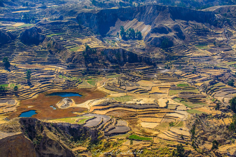 DE - Peru -4705