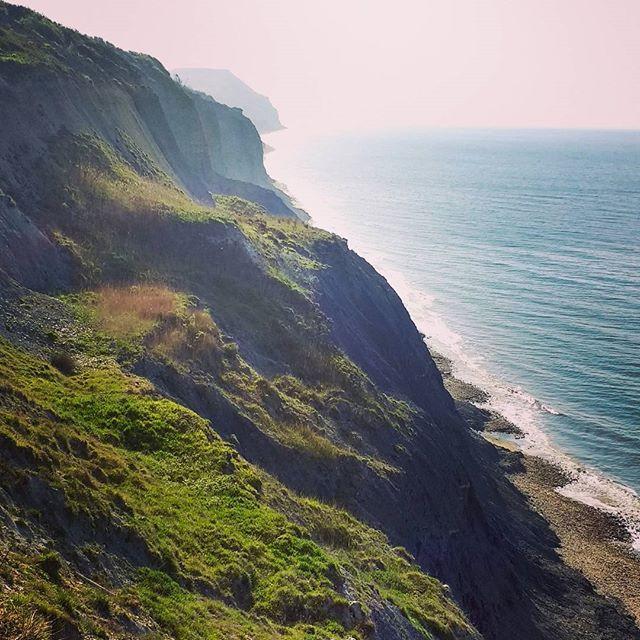 Cliffs at Charmouth