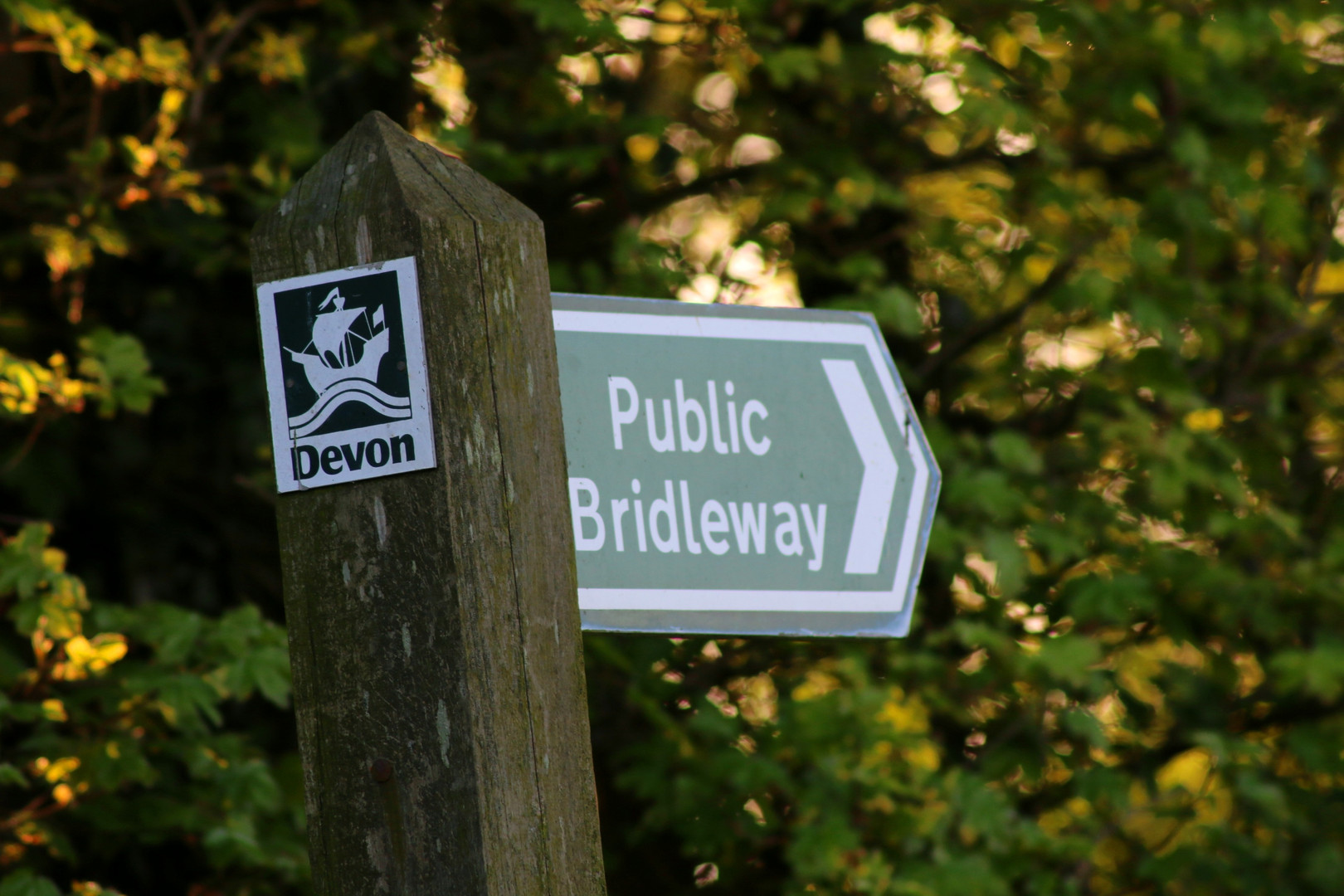 There are country lanes and bridleways all around the site.