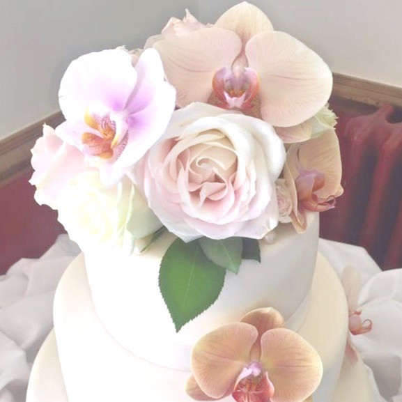 Roses & Orchids
