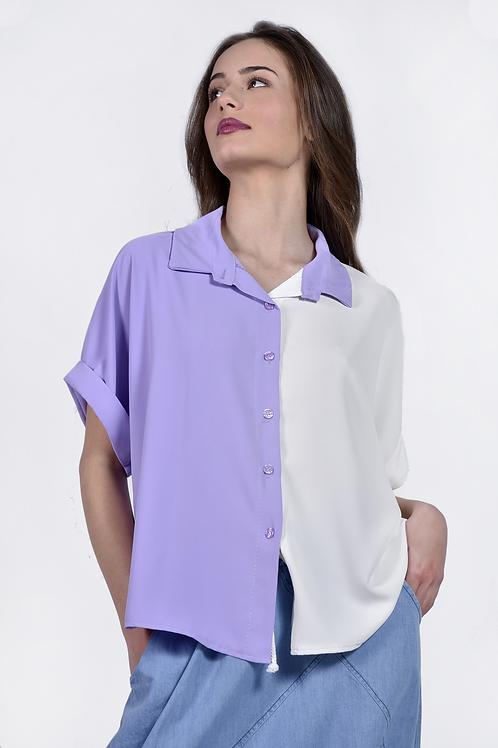 Δίχρωμο πουκάμισο