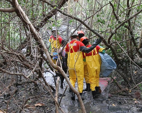 Corpo de piloto é encontrado no mangue