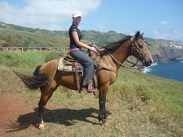 horse in hawaii.jpg