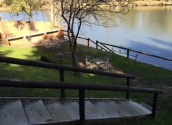 River29
