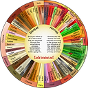 Wine Wheel - Aroma vs Bouquet 1080.png