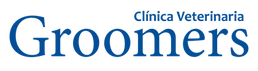 logo-web-png.png