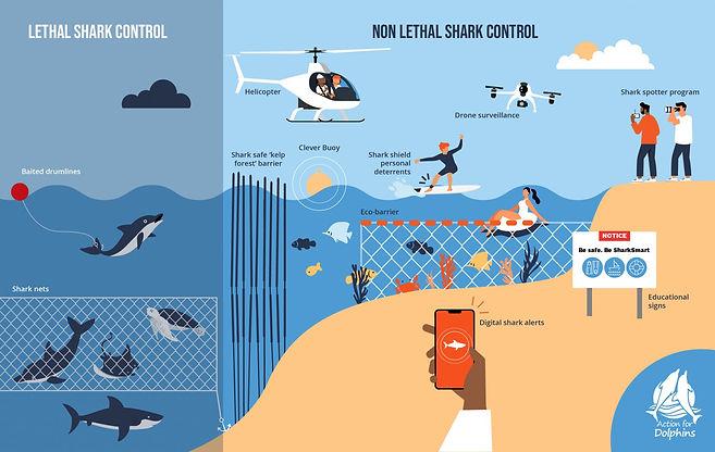 Non lethal shark control measures.jpg