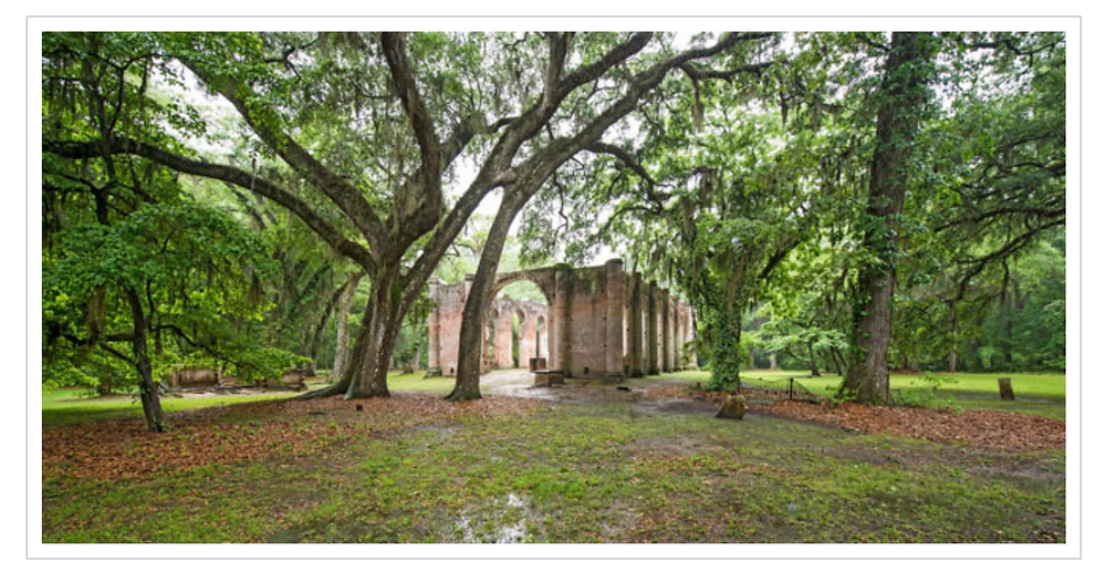 the grounds of old sheldon church ruins