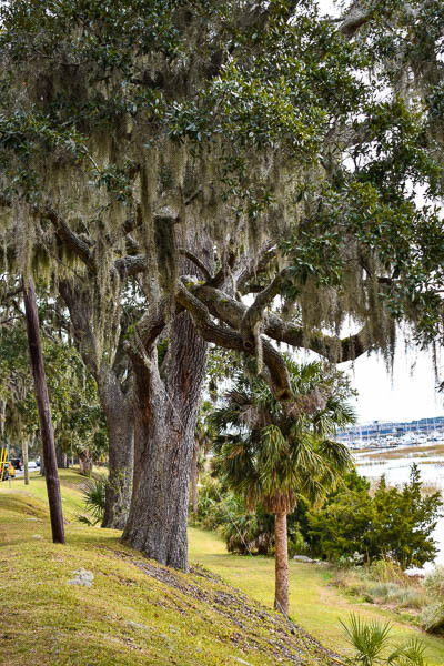 military elopement in beaufort sc