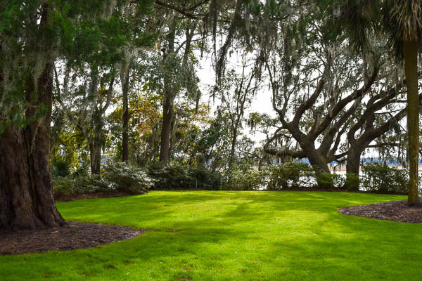 natural corner of beauty in bluffton sc