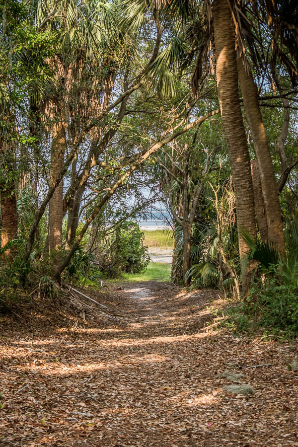 path to the beach from mitchelville