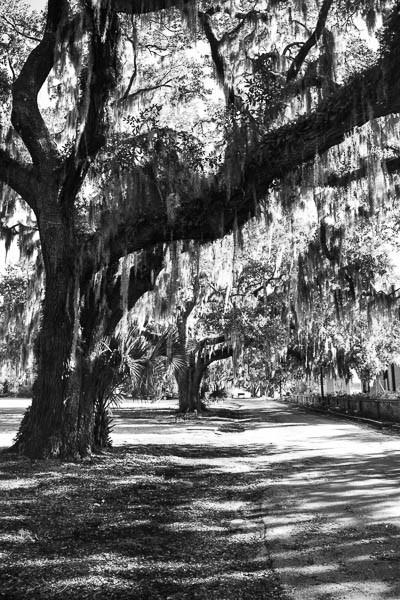 historic park in beaufort sc