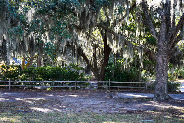 spanish moss trees add southern charm to your elopement