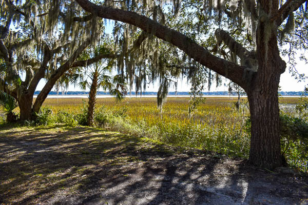 marsh view at your elopement ceremony