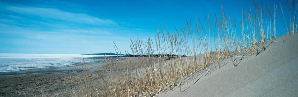 hilton head island beach sc