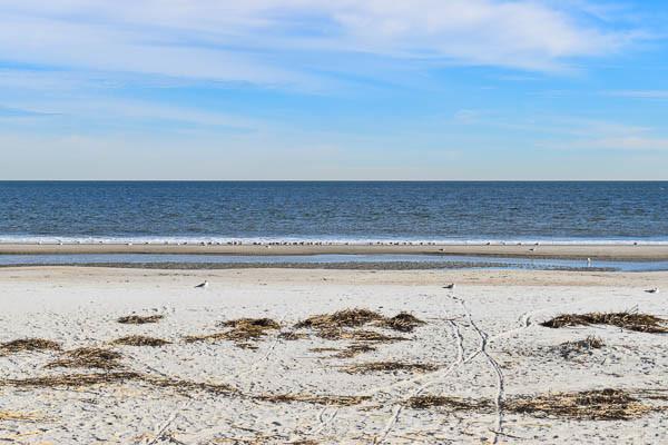 Hilton head beach elopement location