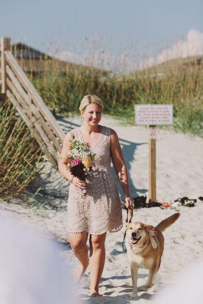 bride walks dog at beach wedding