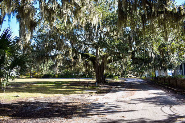 secluded elopement in beaufort sc
