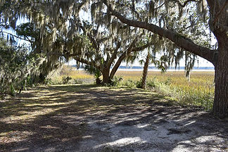 southern wedding sc secluded pocket park in Beaufort Sc for an elopement